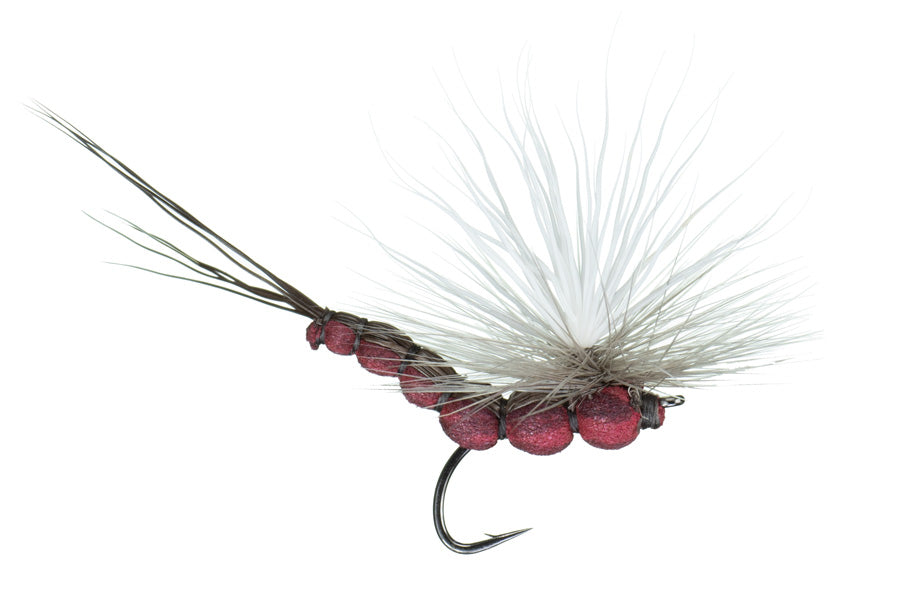 McCoy's All Day Isonychia Spinner Fly