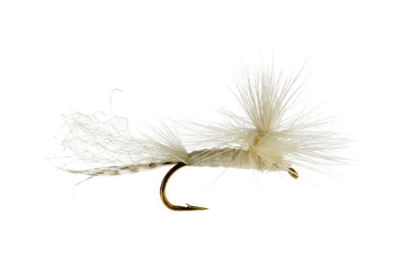 Parachute White Fly