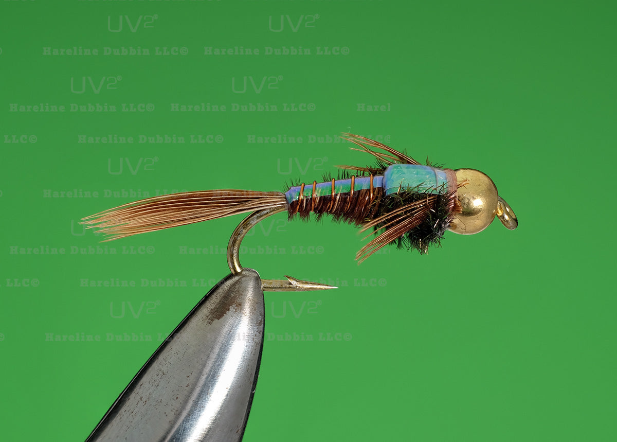 Bead Head Pheasant Tail Flashback