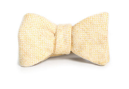 Tasty Ties Ain't No Sunshine Bow Tie