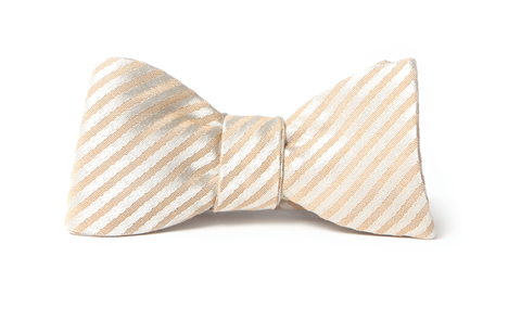 Gold Striped Bow Tie from Tasty Ties
