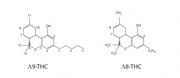 Molecules of Delta 9 THC and Delta 8 THC