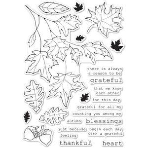 CL5243 Grateful Autumn clear stamp set