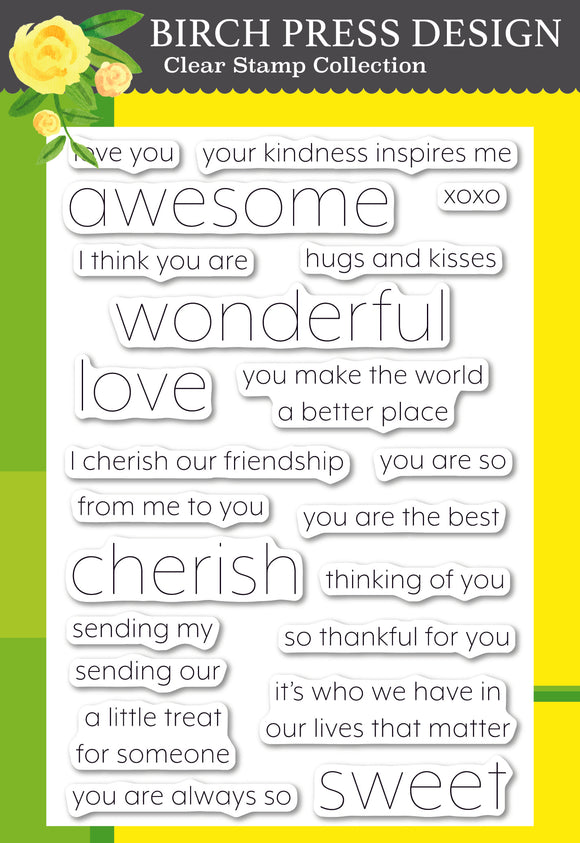 CL8151 You Are Awesome clear stamp set