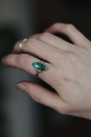 King Manassas Turquoise Ring (YOUR SIZE)