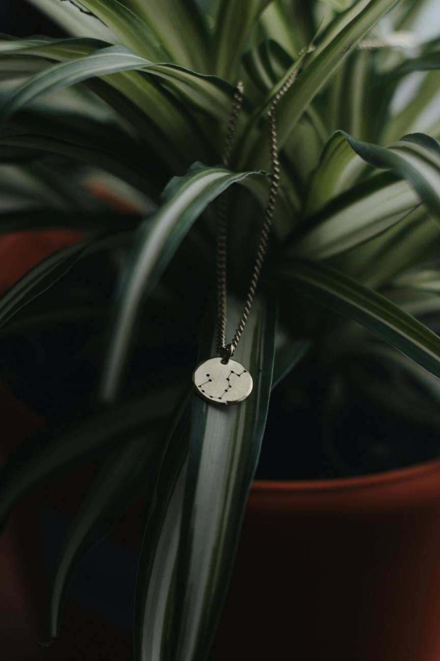 Brass Zodiac Constellation Necklace Minimalist