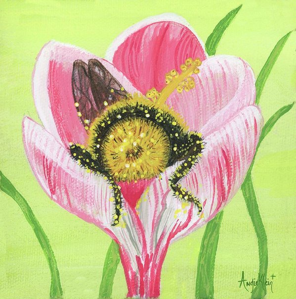 Art Print - Bumble Bee Butt In Pink