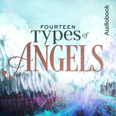 14 Types of Angels Audiobook
