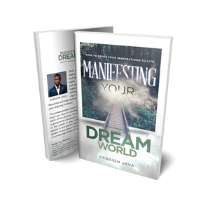 Manifesting Your Dream World   Paperback