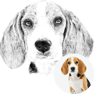 Custom Pet Hand Dawn Portrait from Photo | Digital File