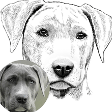 Load image into Gallery viewer, Custom Pet Hand Dawn Portrait from Photo | Digital File