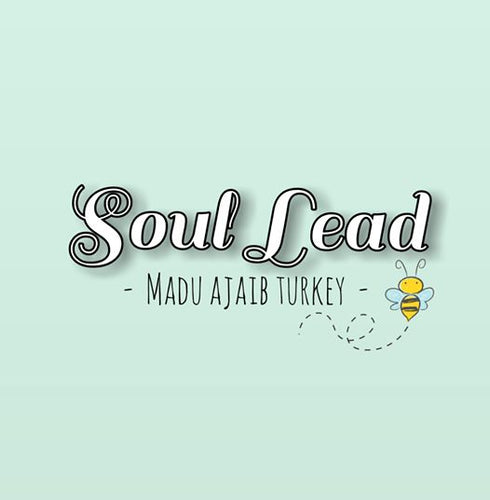 REGISTRATION DS SOULLEAD BY AERIL ZAFRIL & WAWA ZAINAL