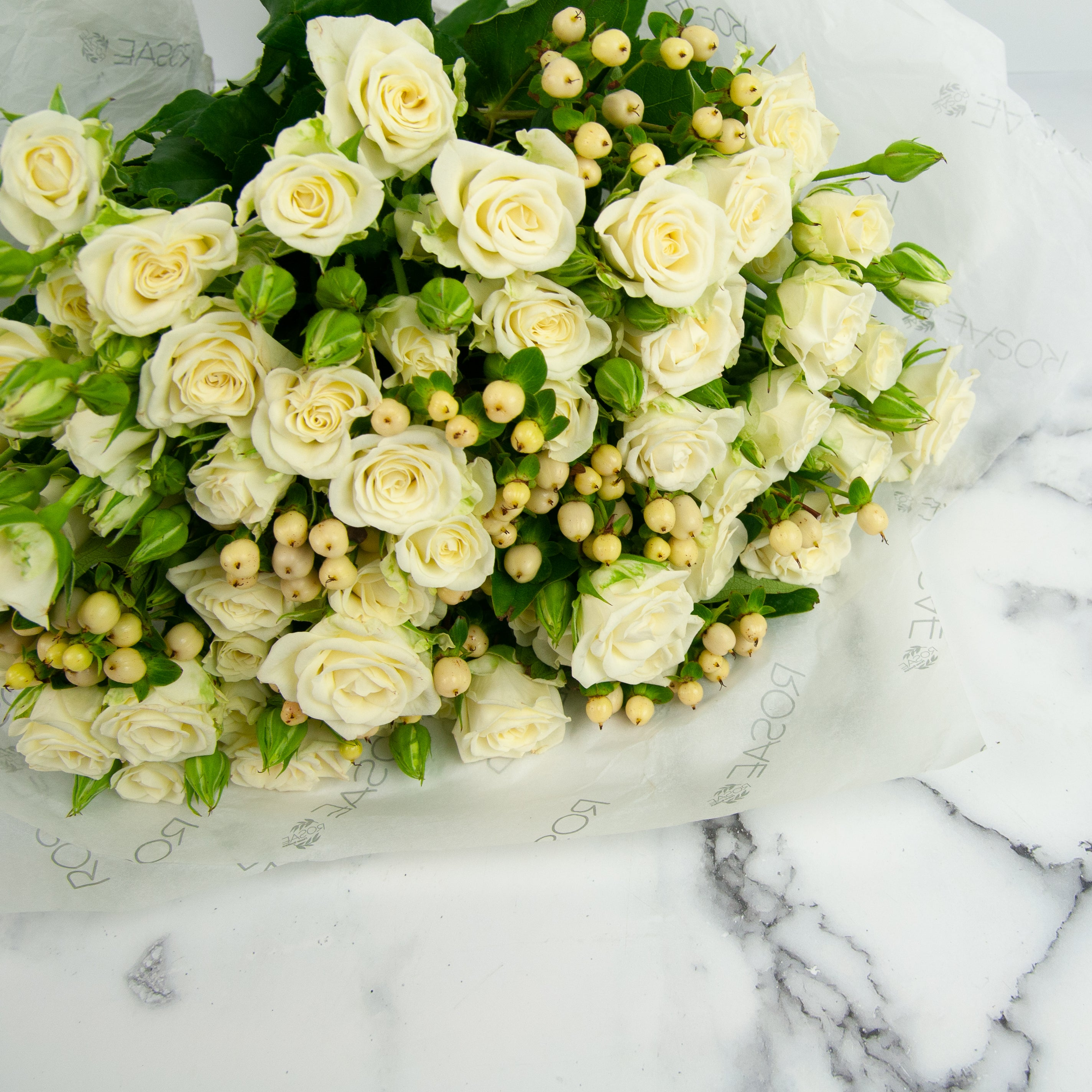 Baby Ivory Roses