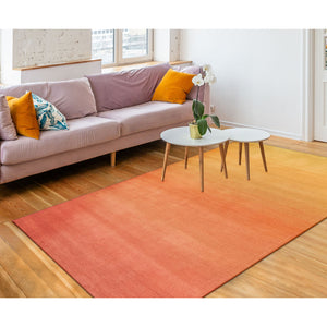 Liora Manne Arca 9206/37 Ombre Blush Area Rug by Trans Ocean