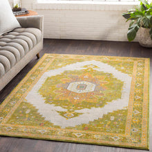 Surya Aura Silk ASK-2321 Area Rug