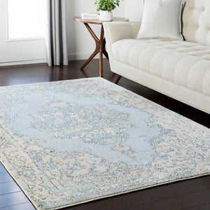 Surya Asia Minor ASM-2306 Area Rug
