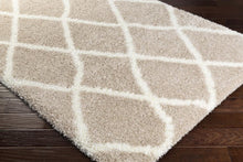 Surya Cloudy Shag CYS-3403 Area Rug