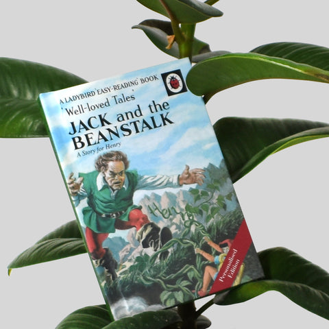 Jack and the Beanstalk: A Ladybird Personalised Book