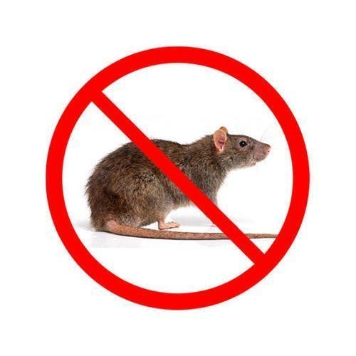 Mice Service Request