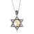 925 Sterling Silver Star of David with 9K Gold Lion of Judah Pendant