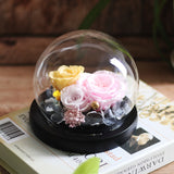 Beauty And Beast Eternal Flower Rose Globe Glass Dome