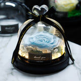 Beauty and Beast Eternal Rose Night Light Glass Dome