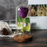 Sparkly Glitter Eternal Rose in Glass Dome LED Light