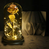 Beauty & The Beast Rose LED Light In Glass Dome Gift