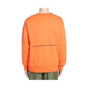 Ambush AW19 Crewneck Sweatshirt - Orange, Clothing- dollarflexclub