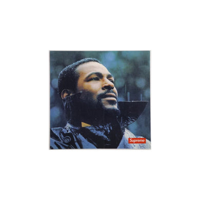 Marvin Gaye Sticker, Sticker- dollarflexclub