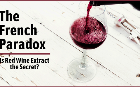 Is Red Wine Extract the Secret to the French Paradox? 🍷