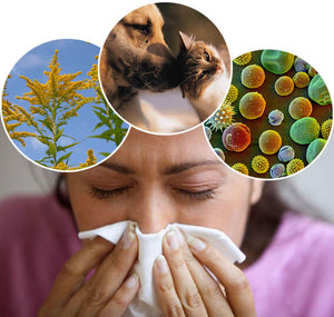 The Role of Oxidative Stress in Asthma and Allergies