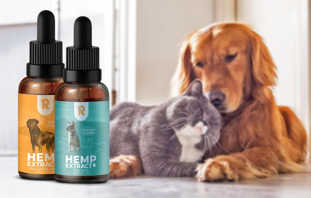 125mg (4.2mg/ml) Full-Spectrum Hemp CBD Oil For Cats