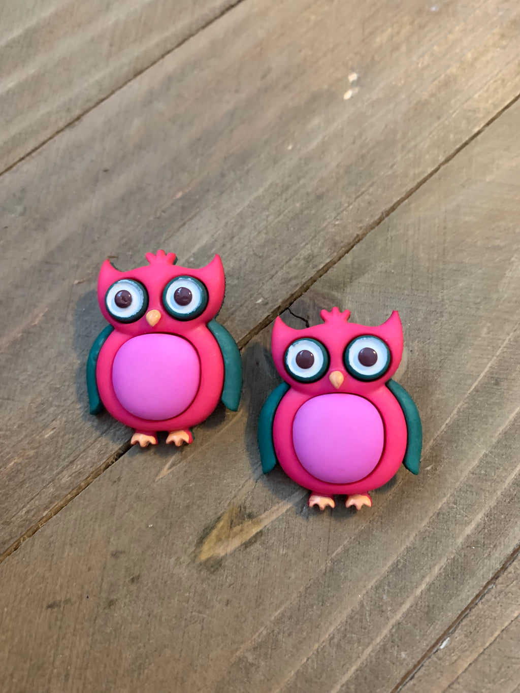 Wise Old Owl Post Earrings