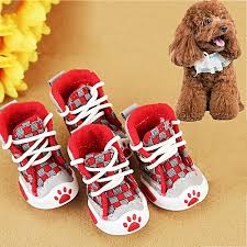 printed dog shoes