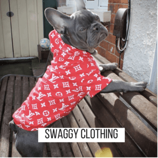 SWAGGY CLOTHING