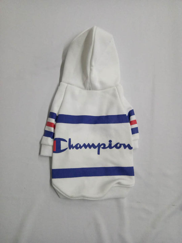 Champion Smarty Pants Drippy Hoodie (HOT ITEM)
