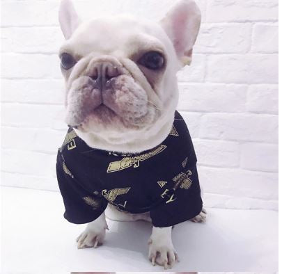 Boy Pup High Quality Black and Gold royalty T-shirt (HOT ITEM!)
