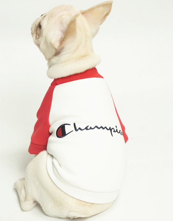 Champion Classic Simple Comfy Tee (LIMITED EDITION)