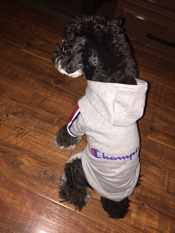 Champion Autumn Boxer Training Hoodie