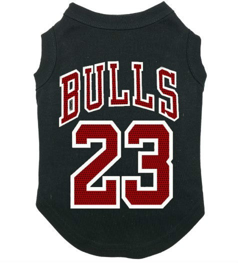 "Jordan ""23"" Championship Hoodie or Vest (HOT ITEM!) (BIG DOGS)"