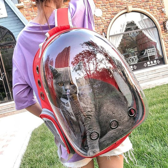 See-Through Puppy Swag Eyes open Backpack