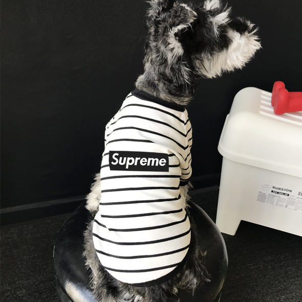 Supreme Striped YG Basic Shirt (HOT ITEM)