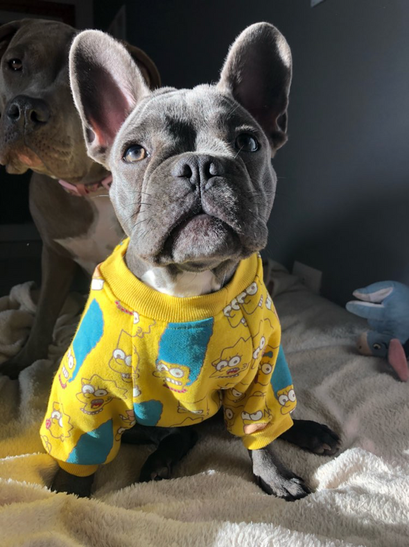 The Simpson's Yellow Throwback Dog Sweater