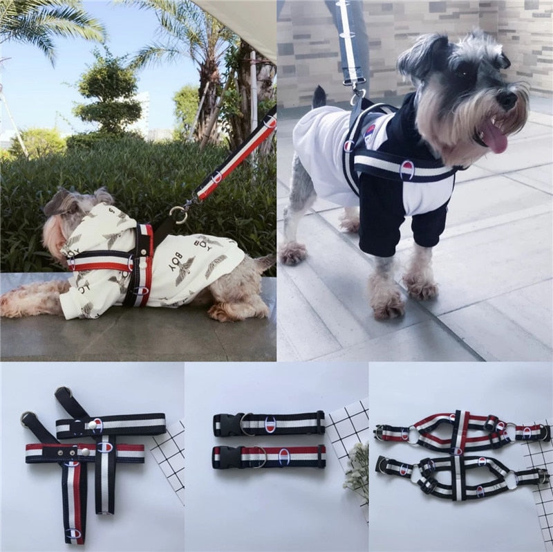 Champup Exclusive HQ Adjustable Leash & Collars