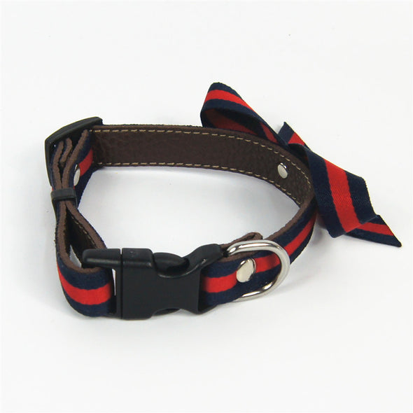 Spring Time Swaggy Smarty Dog Collar and Leash Set