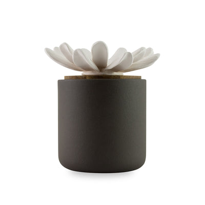 Daisy Bloomster Pot Clay Diffuser