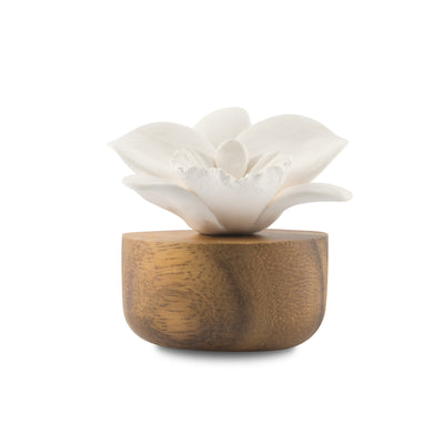 Flower Refreshment Scenting Clay Orchid