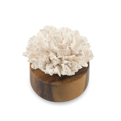 Carnation Flower Refreshment Scenting Clay