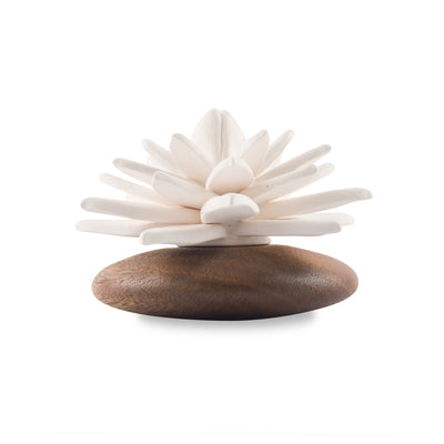 Succulent Diffuser Scenting Clay Water Lily